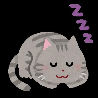 インフルエンザはたっぷりの睡眠